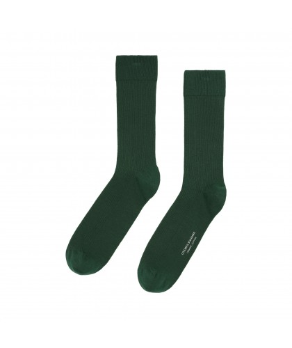 Chaussettes Coton Bio Emerald Green COLORFUL STANDARD