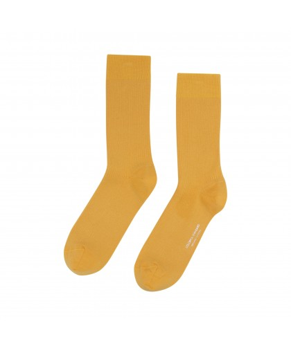 Chaussettes Coton Bio Burned Yellow COLORFUL STANDARD
