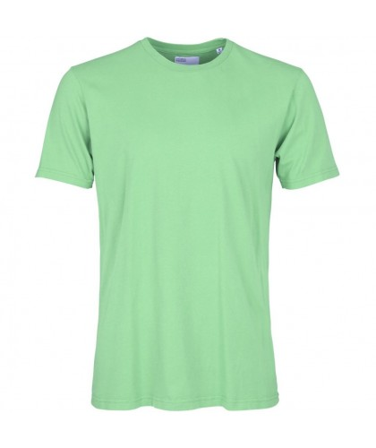 T-shirt Coton Bio Faded Mint COLORFUL STANDARD